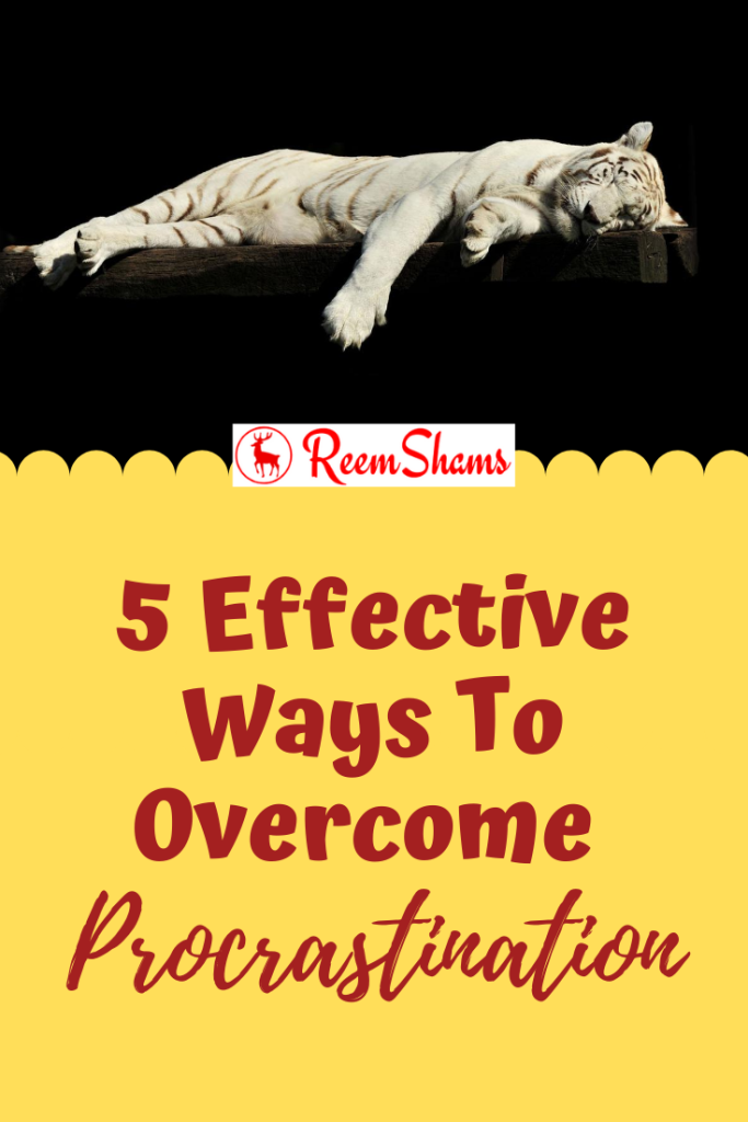5 Effective Ways To Overcome Procrastination